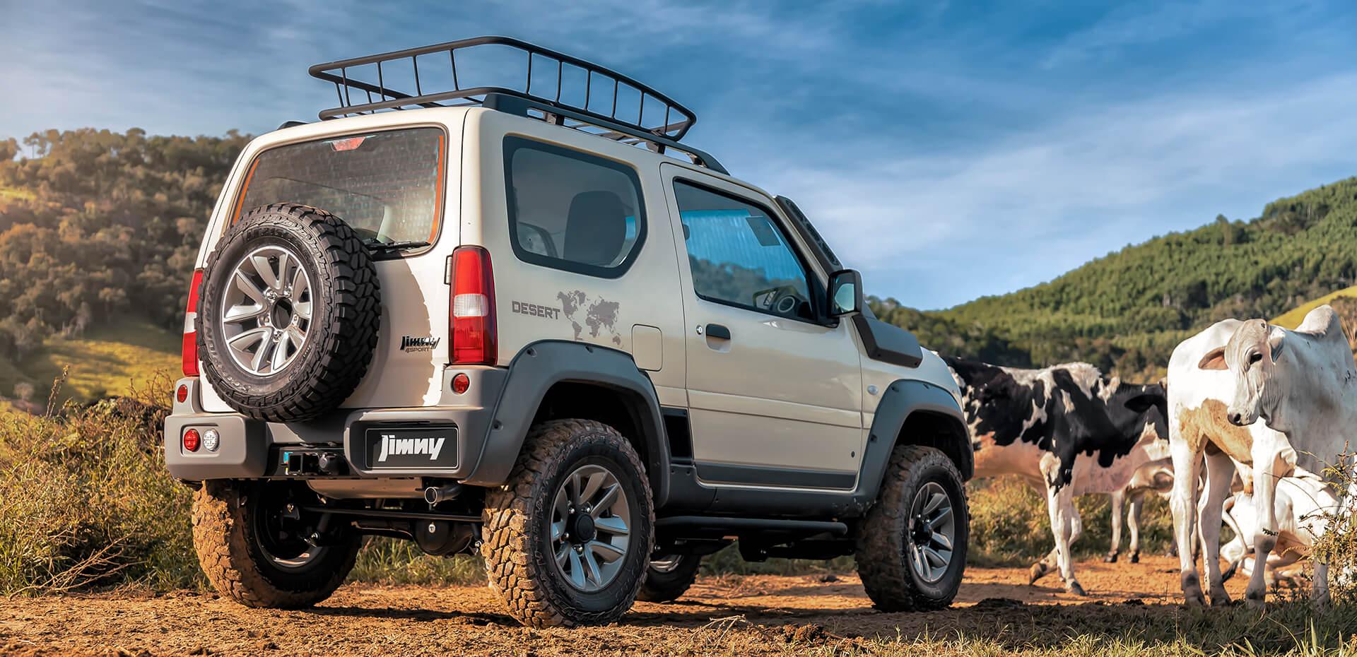 Suzuki JIMNY DESERT 10
